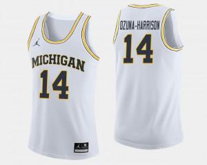 Michigan Wolverines #14 For Men Rico Ozuna-Harrison Jersey White NCAA College Basketball 350422-226
