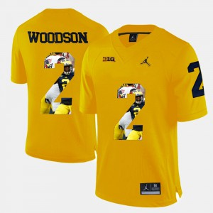 Michigan #2 Mens Charles Woodson Jersey Yellow Player Pictorial NCAA 776005-290